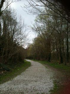 Chemin #2