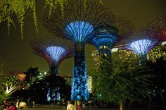 Singapore Night Sightseeing Tour with Gardens by the Bay, Bumboat Ride and Bugis Street - Singapore | Viator