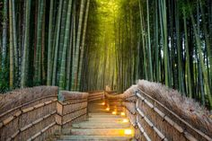 If you'd like to feel like you're in a world that's all your own for Valentine's Day you should spen... - Shutterstock, kyoto