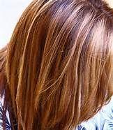 Caramel Blonde Highlights On Dark Brown Hair - Bing Images