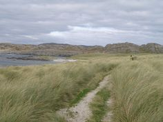 Hike Colonsay's wild coast, then retire to the island's single inn for oysters pulled from the ocean that afternoon. The Inner Hebrides have it all over Skye, if you ask me.   #JetsetterCurator