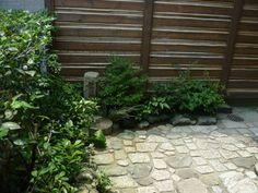 zen garden space