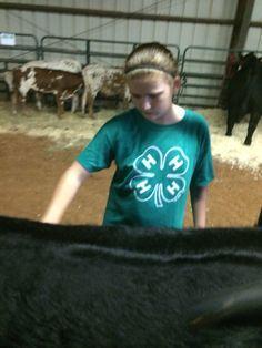Brushing Her heifer