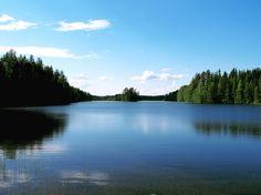 Great Lakes Biodiesel Inc