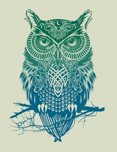 Poster | WARRIOR OWL von Rachel Caldwell