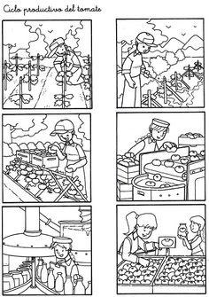 Secuencias Temporales para recortar y colorear!! - Betiana 1 - Àlbums web de Picasa Sequencing Pictures, Story Sequencing, English Activities, Preschool Activities, Preschool Apple Theme, Health Unit, Sequence Of Events, Picture Boards, Tracing Worksheets