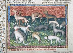 Livre de la chasse, MS M.1044 fol. 28v - Images from Medieval and Renaissance Manuscripts - The Morgan Library & Museum