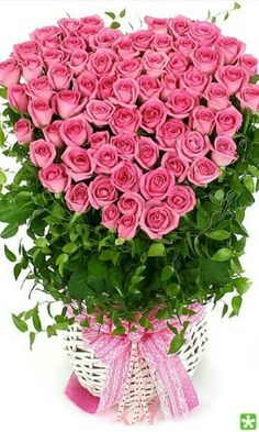 Holiday Party Discover Image discovered by Альбина Виговская. Find images and videos on We Heart It - the app to get lost in what you love. Beautiful Flowers Wallpapers, Beautiful Flowers Garden, Amazing Flowers, Beautiful Roses, Pretty Flowers, Pink Flowers, Basket Flower Arrangements, Beautiful Flower Arrangements, Rose Arrangements