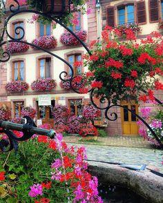 Fais de ta vie un rêve, et d'un rêve, une réalité. Bergheim, Alsace by @sennarelax #france   Discover the most hidden places on our travel map! www.mapiac.com