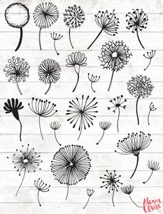 Dandelion Clipart - 28 Hand Drawn Dandelion Clock Cliparts - Seeds Clipart - Dandelion Logo Elements - Dandelion Illustration - 90 Get some adorable hand drawn dandelion clipart, perfect for logos, invitations, birthdays, weddings Hand Illustration, Scrapbook Disney, Clock Clipart, Vector Clipart, Watercolor Clipart, Dandelion Clock, Dandelion Drawing, Dandelion Wish, Selling Handmade Items