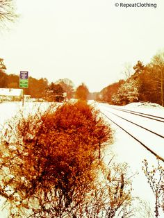 Lone Snow Day With Bare Bushes and Rail Road 5x7 by RepeatClothing, $10.00