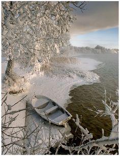 Lake's edge in Winter