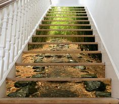 Bamboo Forest l Stair Risers Sticker PVC Sticker Mural Stairs Mural Vinyl Decal Wallpaper Removable Peel off & Stick on 52 Marble Stairs, Stone Stairs, Wooden Stairs, Stair Art, Decoration Photo, Stair Risers, Stair Walls, The Doors, Basement Stairs