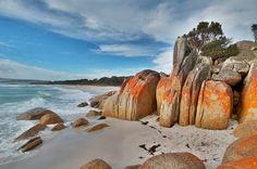 Discover the world through photos. Tasmania, New Zealand, Wildlife, Coast, Around The Worlds, Australia, Community, Fire, Holidays