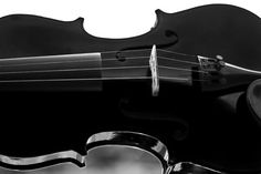 Black Violin : photo 8x12 Fine Art Photography music print black and white neutral wall decor. $21.00, via Etsy.