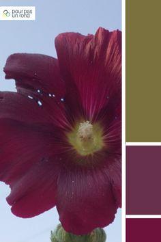 Palette kaki, mauve et violet. Découvre des conseils pour créer la palette de couleurs de ta marque pas à pas. Violet, Inspiration, Art, Advice, Colors, Board, Paint, Biblical Inspiration, Art Background
