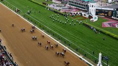 Things to do in May: Go to the Kentucky Derby