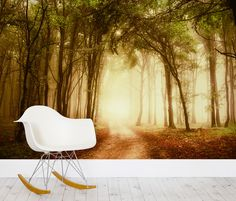 Our Misty Clearing Forest Mural Wallpaper is a gorgeous woodland scene encompassing the stillness and mystery of the forest.