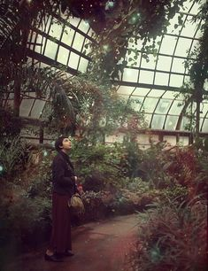 There is something about the large greenhouses of botanical study that are so calming.