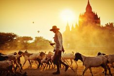 As we now enter 2018, what method of transport should you choose when making the arduous journey from Yangon to Bagan? Plane, train, or automobile? Which is the best option for your wallet? Which is the best option for your backside? And which is the best option for your safety?