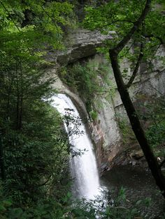 Looking Glass Falls in Pisgah Forest
