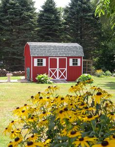 This Kloter Farms 10' x 14' Signature Dutch Colonial shed is a perfect place to store your gardening tools!
