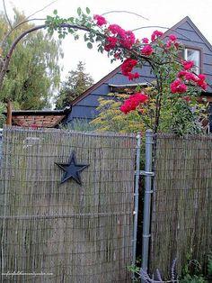 61 best hiding ugly fencing images garden fencing gardens rh pinterest com