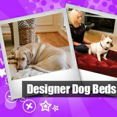When choosing dog beds, it is essential for pet owners to find durable and sturdy ones. Aside from that, the right colour, size and texture must be determined to find the appropriate dog bed. Dog Storage, Designer Dog Beds, Dog Design, Labrador Retriever, Colour, Texture, Luxury, Pets, Animals