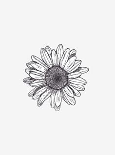 Daisy tattoo idea -CC
