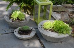 A bag of concrete and some thrift store containers are all you need to make…