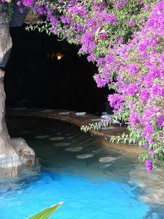Where to Stay on Maui: Grand Wailea swim up bar, Maui