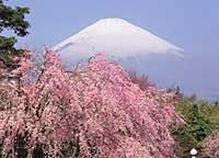 Nature and Climate in Japan