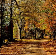 Slide Show: Country Roads in New England - Yankee Foliage - Your Source for New England Fall Foliage