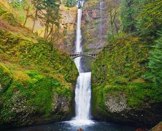 Located just 30 miles east of downtown Portland, Multnomah Falls -- Oregon's tallest waterfall -- attracts visitors of all types and ages.