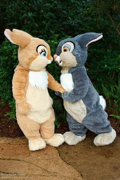 WDW Oct 2011 - Meeting Thumper and Miss Bunny by PeterPanFan, via Flickr
