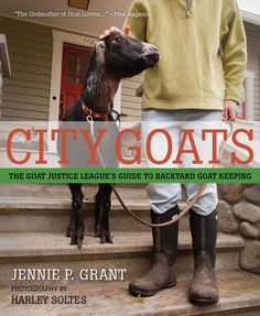 """""""City Goats"""" is a step-by-step guide to raising a pair of dairy goats in your urban or suburban backyard, from city zoning and selecting goats to setting up your yard, building a shed, feeding and caring, kidding, and milking. Read an excerpt from this book on how to decide if raising goats in the city is right for you."""