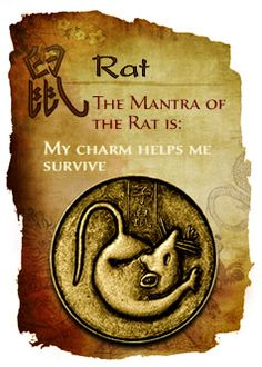Get in-depth info on the Chinese Zodiac Rat personality & traits @ http://www.buildingbeautifulsouls.com/zodiac-signs/chinese-zodiac-signs-meanings/year-of-the-rat/