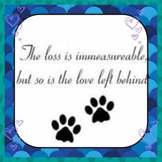 to my latest angel, Little One II. my heart is broken, I never thought you'd leave me now.
