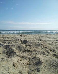 So Coastal... | HollisterCo.com