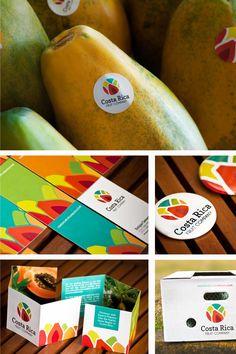 Costa Rica Fruit Company Logo by Marianella Snowball, via Behance