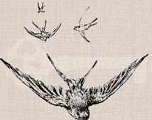 Instant Download 3 swallows Digital Graphic: No.350, image transfer to burlap, linen, fashion, decor, printable artwork