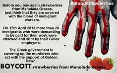 http://www.x-pressed.org/?xpd_article=boycott-the-strawberries-of-manolada-greece