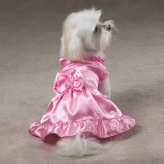 Wedding Party Bridesmaid Dresses for Dogs | Best for Bride