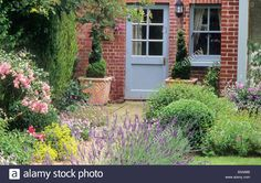house-blue-painted-back-door-paved-patio-rosa-the-fairy-rose-lavender-B3A88B.jpg (1300×916)