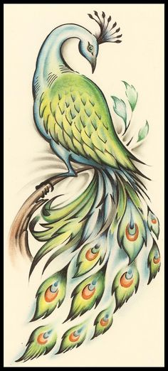 pavão+peacock_design_jk_by_jksart-d45uk7m.jpg (601×1330)