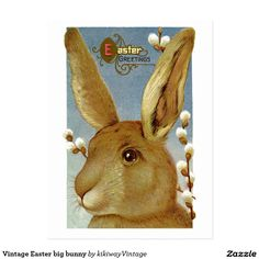 Vintage Easter big bunny Postcard