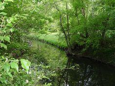 Cool Creek Park Nature Center; Carmel, IN