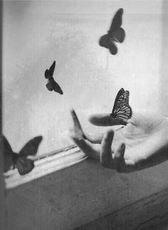 Butterflies are born so free and though they're coccoons at their own birth....  They then grow wings from dreams it seems.....   And then they fly free to show their worth. Jeff♥