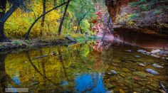 West Fork Reflections by Pat Kofahl on 500px
