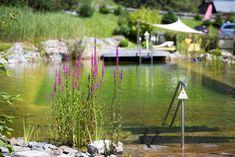 Sommergenuss im Ferienhotel Hubertus**** - SPAworld Medical Wellness, Hotels, Summer